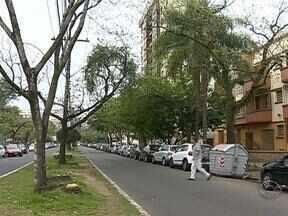 Instituto de pesquisa de São Paulo irá fiscalizar as árvores em risco de Porto Alegre - Contrato com a instituição foi feito sem licitação.