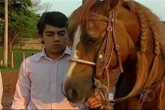 Cavalos são fortes aliados da lida no campo - Em diversas fazendas há sempre um representante de raças, como campolina, manga-larga, entre outros. Veja exemplos de pessoas que tem verdadeira paixão por estes animais.