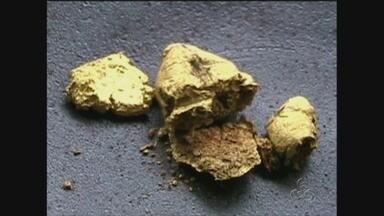 Extração ilegal de ouro gera atritos em Manicoré, no AM - Atividade ocorre de forma ilegal