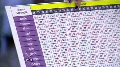 Tabela chinesa revela o sexo do bebê. Segundo a tradição, tem 99% de acerto - Ana Maria ensina como usar a tabela, que tem 700 anos, e outras simpatias