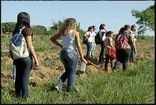 Conheça o campo de trabalho do engenheiro agrícola ambiental - Professor fala sobre como está o campo de trabalho.