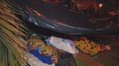 Famílias continuam acampadas em frente à Prefeitura de Sumaré para pedir moradia - Famílias continuam acampadas em frente à Prefeitura de Sumaré para pedir moradia. Eles moram em uma área irregular na cidade.