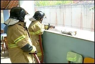 Alunos de Macuco, RJ, recebem treinamento contra incêndio - Objetivo é treinar alunos e funcionários para situações de risco.Ação foi orientada pelo Corpo de Bombeiros.