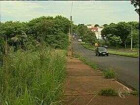 Moradora do Jardim Alvorada reclama da sujeira em um fundo de vale em Maringá - Até uma cobra foi encontrada no local