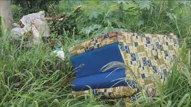 Confira novas denúncias de telespectadores para o Fiscal do Lixo - Sumarezinho e Monte Alegre possuem focos de dengue, segundo moradores.