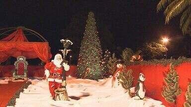 Taiaçú Taiuva enfeita cidade com neve, luzes e árvores de Natal - Coreto da cidade ganha novo visual e vira casa do Papai Noel.