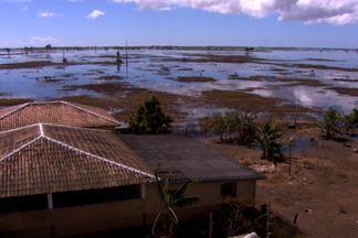 Agricultores e pecuaristas sofrem os prejuízos causados pela chuva no ES - Apesar da chuva ter parado há alguns dias, ainda tem área alagada. Alguns produtores registram prejuízos superiores a R$ 500 mil.