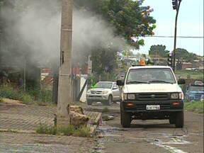 Trabalho com o fumacê começa por bairros com maior infestação do mosquito da dengue - Guarda municipal tem flagrado pichadores e ladrão se passa por cliente para assaltar barbearia. Notícias desta quinta-feira(16).