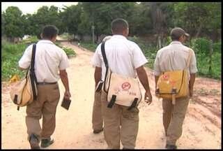 Agentes de endemias vão intensificar combate à dengue - Comn a chegada do período de chuvas e o grande número de terrenos abandonados em Santarém, a preocupação com a doença aumenta.