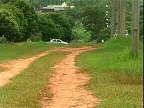 Moradores de Alto Paraná reclamam de mato e falta de asfalto - Moradores de Alto Paraná reclamam do mato na Avenida Ivaí.