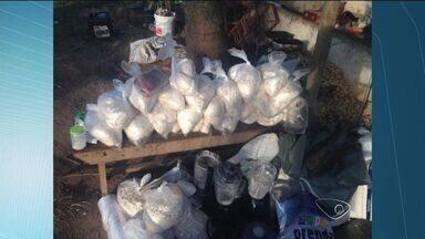 Laboratório de refino de drogas é encontrado por policiais no ES - Militares davam apoio a uma ocorrência quando sentiram o cheiro da droga.Uma mulher de 51 anos foi detida dentro da residência.
