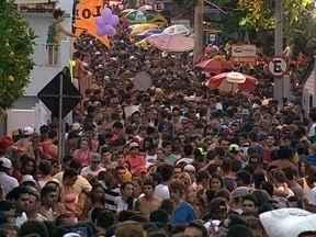Tradicional Zé Pereira reúne quase 20 mil pessoas no Ribeirão da Ilha - Tradicional Zé Pereira reúne quase 20 mil pessoas no Ribeirão da Ilha