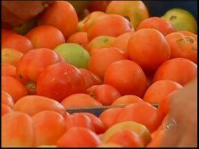 Tomate volta a ser vilão com os preços em alta - Alguns alimentos estão com o preço e alta, um deles é o tomate. Pouca chuva e alta temperatura tem prejudicado a produção de alimentos.