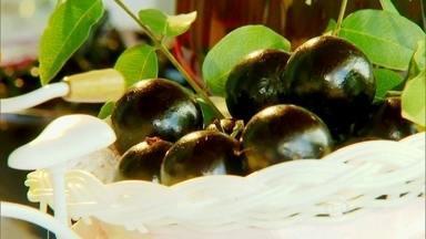 Estudos mostram que a jabuticaba também é eficiente para a saúde - O Departamento de Engenharia de Alimentos da Unicamp descobriu que as melhores propriedades da jabuticaba estão na casca. Transformada em pó, se mostrou surpreendente para a prevenção de doenças.