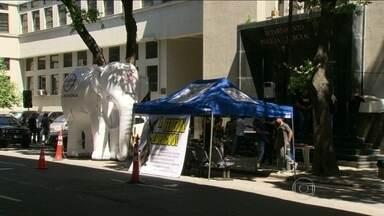 Policiais federais fazem protesto no Rio - Eles levaram um elefante branco inflável, para simbolizar a ineficiência dos inquéritos. Os agentes pediram ainda mais investimentos e reajuste salarial.