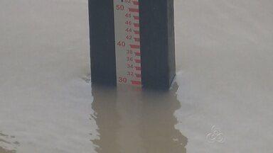 Chuvas causam prejuízos para agricultores de Manacapuru, no AM - Áreas baixas do município foram as mais atingidas; chuvas colaboram para cheia dos rios.
