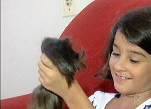 Menina de oito anos doa cabelo para pessoas que enfrentam câncer, no ES - A atitude da garota surpreendeu a família.