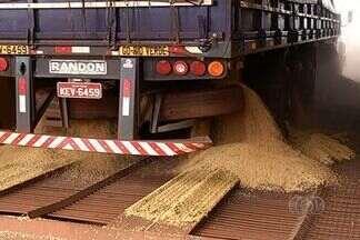 Estiagem provoca redução no movimento de caminhões nos armazéns de Rio Verde - Produtores tiveram que antecipar a colheita e também sofreram com perda na produtividade.