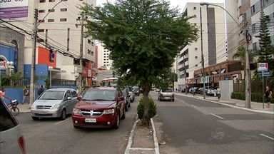 Retirada de 202 árvores para mudanças no trânsito preocupa biólogos - Árvores serão retiradas para implantação de binários.
