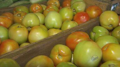 Produção no campo reflete prejuízos do tempo seco - Verduras e algumas frutas estão mais caras. Tomate passou de R$ 2,50 o quilo para R$ 7.