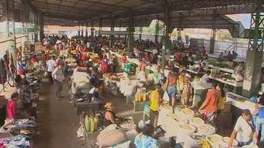Donas de casa reclamam do preço dos produtos nas feiras de Macapá - AGORA ATENÇÃO DONA DE CASA. O CHEIRO VERDE ESTA MAIS CARO. AS CHUVAS DE MARÇO PREJUDICARAM A COLHEITA DOS AGRICULTORES DO AMAPÁ. E ISSO FEZ COM QUE O PREÇO DAS VERDURAS EM GERAL DISPARASSE NAS FEIRAS.