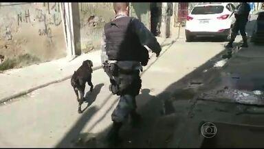 Batalhão de Ação com cães faz buscas no Complexo da Maré - Os policiais percorreram ruas e becos em vários pontos do complexo de favelas, na manhã desta quinta-feira (27). Foram encontrados carregadores de pistola e cocaína.