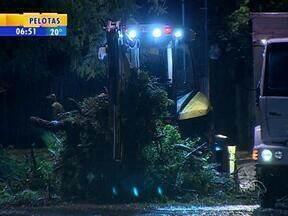 Cortadas as oito árvores que impedidam a duplicação da Avenida Beira Rio - Trânsito foi bloqueado na Avenida Mauá, próximo à Usina do Gasômetro.