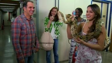 Bruna Marquezine passeia pelos bastidores com a cobra de Em Família - Elenco da novela opina sobre atuação do animal
