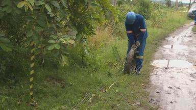 Homem morre vítima de choque elétrico, em Jaboatão dos Guararapes - Vigilante teria pisado em um fio que estava caído no chão quando voltava do trabalho.