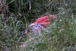Corpo de homem é encontrado em bananal de Joinville - Policia acredita em execução.