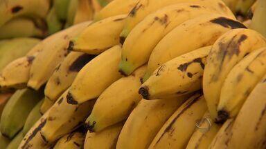 Preço da banana acumula alta de 80% em MS - Mato Grosso do Sul deixou de produzir fruta, que é a mais consumida pela população.