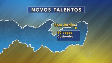 Programa Novos Talentos tem vagas em três cidades de Pernambuco - Interessados têm oportunidades disponíveis em Bom Jardim, Agrestina e Serra Talhada.