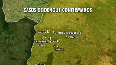 Aumenta o número de casos da dengue em todo o Paraná e também na região oeste - Além de Guaíra, Terra Roxa também enfrenta epidemia. Mas tem municípios mostrando que é possível combater a doença, nós fomos até Nova Santa Rosa mostrar o exemplo.