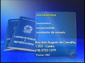 Confira as vagas de emprego desta 5ª-feira em Rio Preto e região - Nesta quinta-feira (5) as ofertas de emprego são para as cidades de Pereira Barreto, Catanduva e Andradina (SP). Veja agora quais são as vagas e onde entregar o currículo.