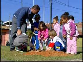 Alunos de Cmei em Divinópolis começam a arborizar unidade em Dia Mundial do Meio Ambiente - Mudas de quaresmeiras e de ipê foram plantadas.