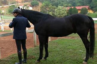 Vídeo com cavalo negro de Guararema será entregue para a Seleção Belga - A Fifa está gravando vídeos que valorizem a vocação e que serão utilizado para motivar as equipes.