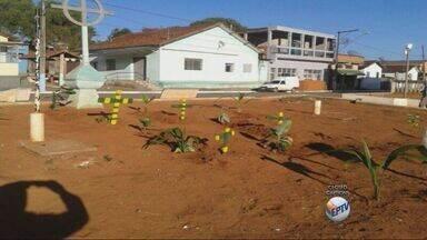 Moradores de distrito em Borda da Mata protestam corte de árvores com cruzes - Moradores de distrito em Borda da Mata protestam corte de árvores com cruzes