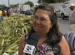 Comerciantes comemoram venda de lenha e milho na véspera de São João - Milho e fogueira fazem parte da tradição junina das famílias caruaruenses.