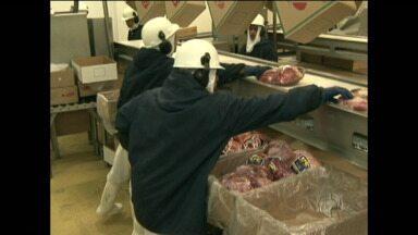 Paranavaí investe milhões para exportação de carne - A confirmação de um caso de vaca louca no Mato Grosso do Sul valorizou a carne paranaense.