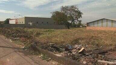 Terreno abandonado preocupa moradores em bairro de Ribeirão Preto - Cansados de conviver com tanta sujeira, eles reclamam da falta de providências por parte da Prefeitura.