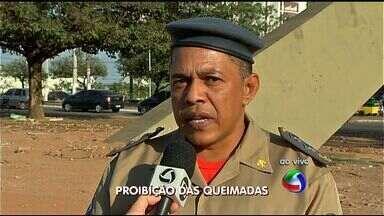 Período proibitivo das queimadas começa nesta terça em Mato Grosso - O período proibitivo das queimadas começa nesta terça em Mato Grosso.