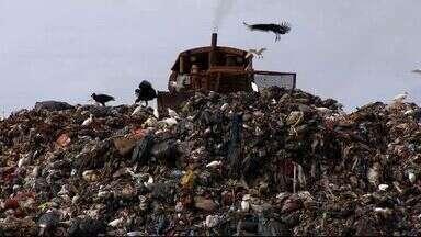 Usina de triagem do lixo deve ficar pronta em 2015 - Enquanto isso, Campo Grande estaria descumprindo a lei que obriga o fechamentos dos lixões. Quem sobrevive da atividade de retirar materiais recicláveis do lixo está preocupado com a situação