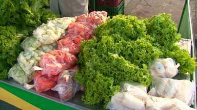 Cresce o cultivo de orgânicos na região de Guarapuava - A produção de alimentos orgânicos cresceu muito este ano no município.