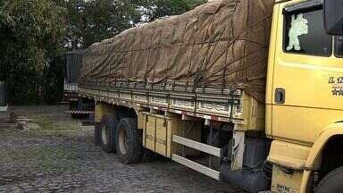 Quase 80 toneladas de fumo e amendoim são apreendidas em Cristinápolis - Três caminhões foram fiscalizados durante operação de combate a sonegação fiscal