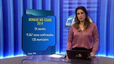 Número de casos de dengue no Ceará é menor do que no ano passado - Ceará teve grande incidência de dengue em 2013.
