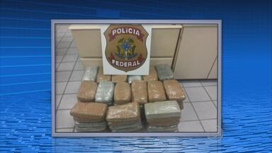 Casal é preso em Caruaru com 50 kg de maconha - Polícia Federal recebeu denúncia anônima de que os dois vinham de Juazeiro, na Bahia, para vender a droga no Agreste pernambucano.