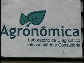 Laboratório de análise de cargas de frutas tem atividades suspensas em Uruguaiana, RS - Local está parado há 3 meses por falta de técnico habilitado.