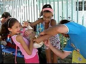 Zoonoses realiza vacinação de cães e gatos em Patos de Minas - Vacinação será feita em dois sábados (23 e 30). O horário é das 8h às 16h; vacinação será realizada em quatro bairros.
