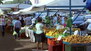 Inverno quente faz baixar alguns produtos na feira - As hortaliças, por exemplo, já estão custando mais em conta.