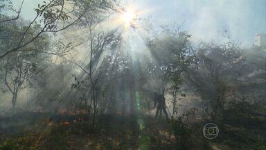 Incêndio de grandes proporções atinge Região da Pampulha - O fogo atingiu uma mata que fica na divisa entre os bairros Paquetá e Castelo. Ele já foi controlado.